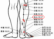 首痛の症例報告-1