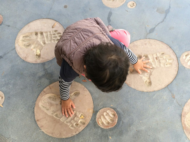 京都市動物園ゴリラの手形