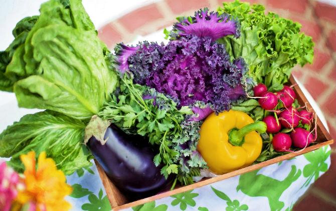 温野菜ばかり食べる