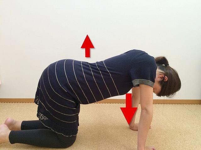 [妊婦ストレッチ]『立甲(りっこう)』のやり方