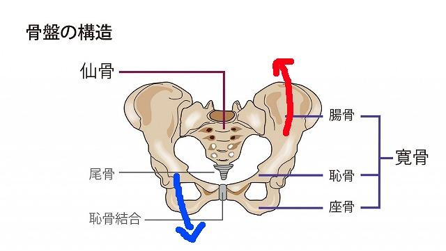 足を組むと骨盤が歪む