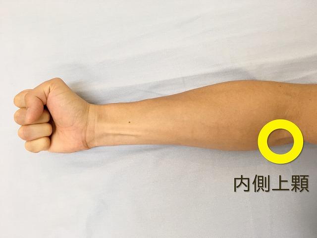 """肘の内側が痛い!手を握ると""""肘の内側が痛い""""原因を分かりやすく解説"""
