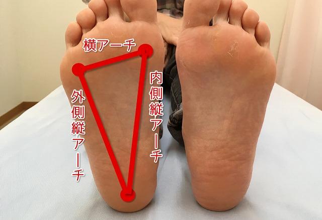 足の裏のアーチ解説