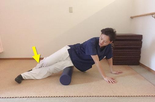 ろの足でからだを動かす