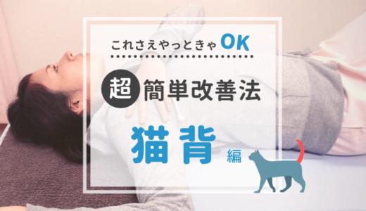 【猫背ストレッチ】タオルを使って簡単にできる方法を紹介【動画つき】