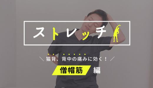 【猫背・背中の痛み解消法】僧帽筋(首・肩・背中)のストレッチ!