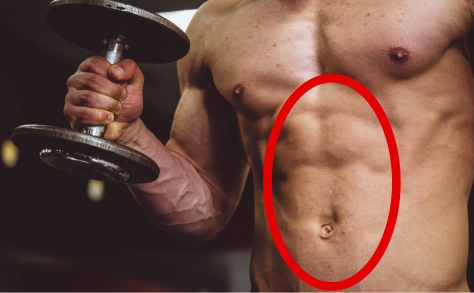 お腹の中央の筋肉が腹直筋