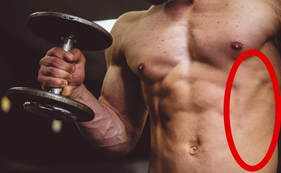 腹斜筋はわき腹にあってカラダを捻じるときに使う筋肉