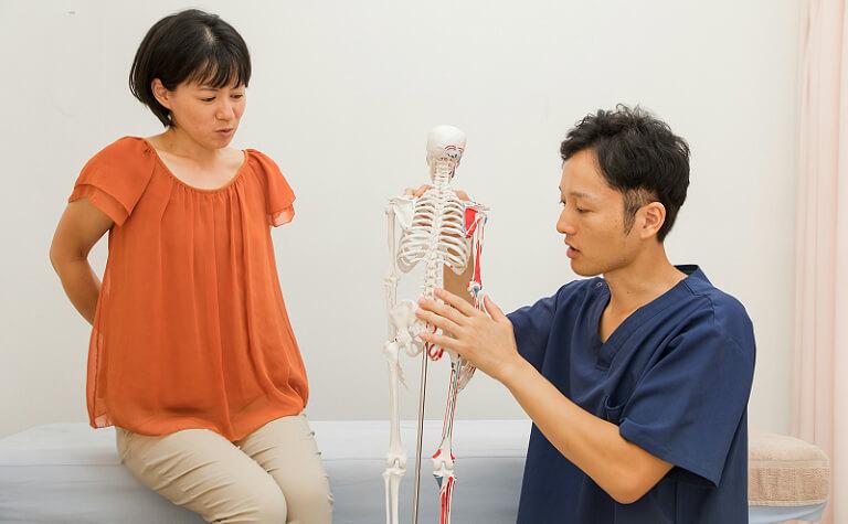 骨盤の状態をわかりやすく説明
